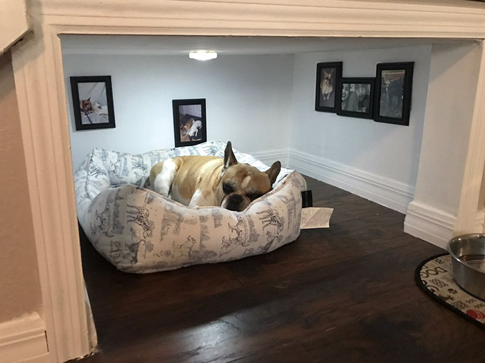Man Builds Entire Bedroom Under Stairs For His Dog