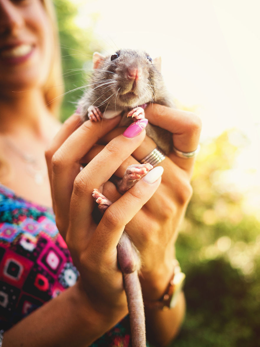 I Photographed Ex-Lab Rats And Mice Going Outdoors For The First Time, And Their Expressions Say It All