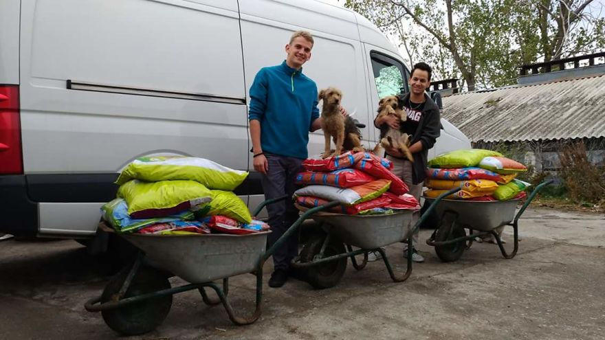 Helping 850 Dogs Is Not Easy At All…but It Makes Me Happy