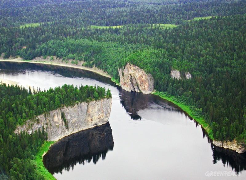 Komi: the biggest virgin forest in Europe