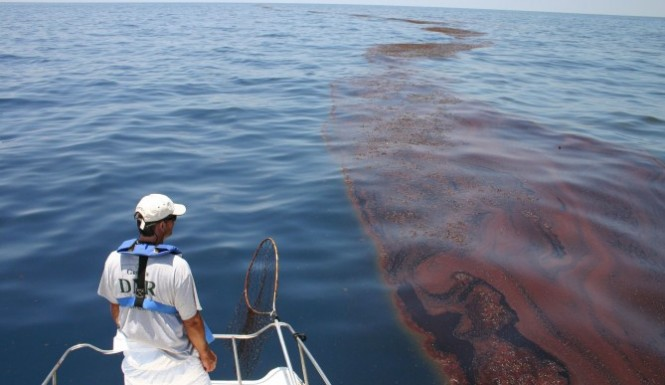 """Missing oil"" from 2010 BP spill found on gulf seafloor"