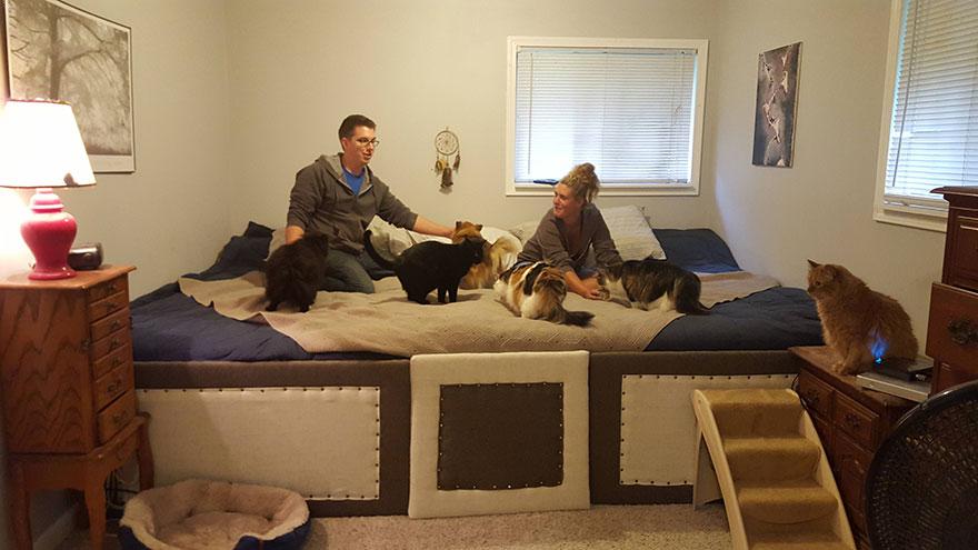 dog-cat-bed-mega-solution-sleep-2