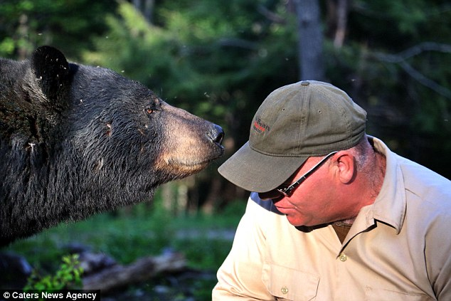 Canadian man claims bears 'adopted him'