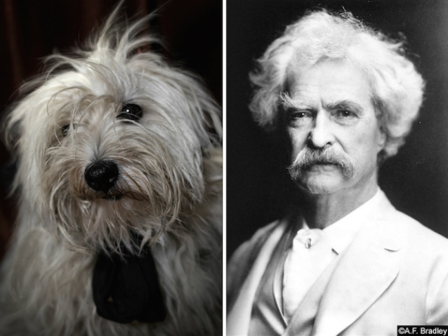 Photographer's Brilliant Project Pairs Famous Writers With Their Furry Doggelgangers