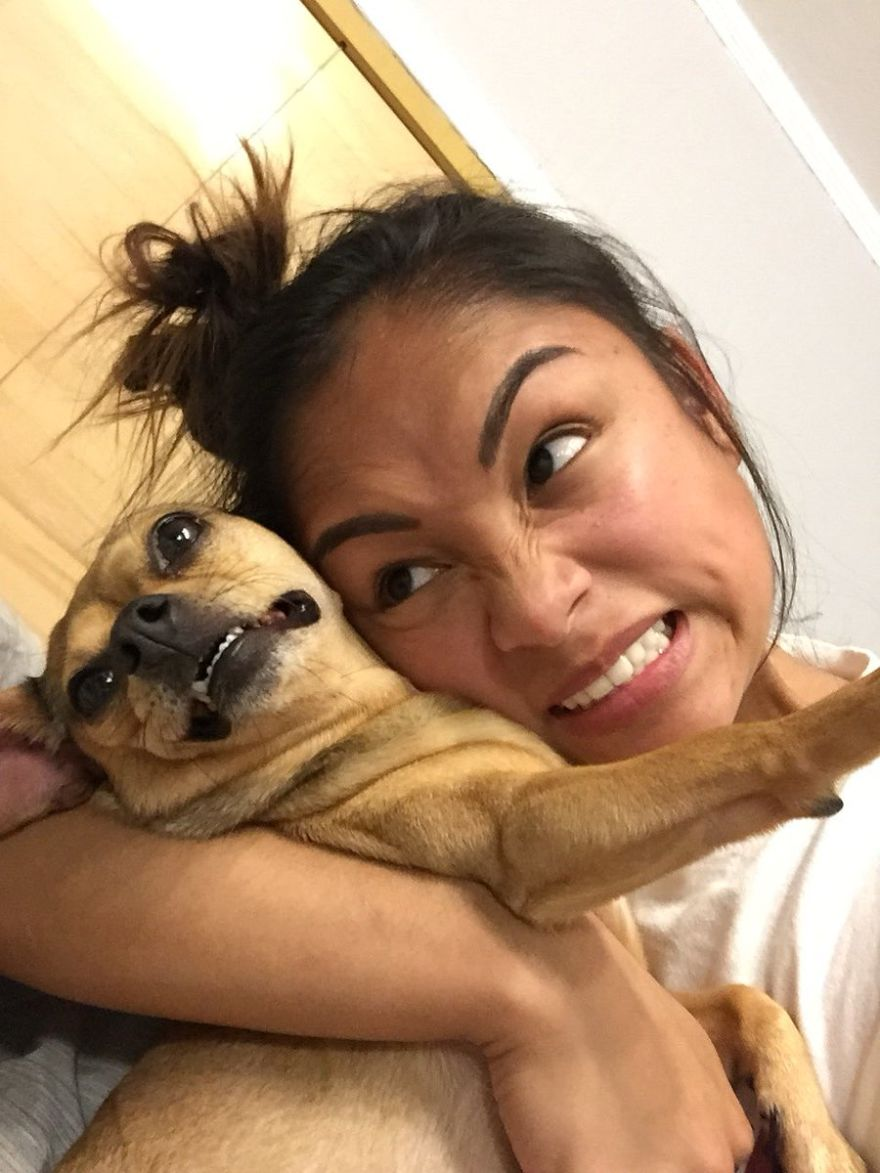 Dog Imitates His Owner In Photographs And The Internet Discovers That Almost All Dogs Can Do This