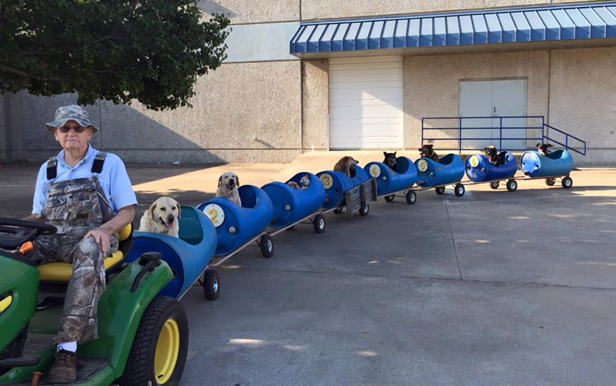 80-year-old Man Made A Train Especially For Dogs