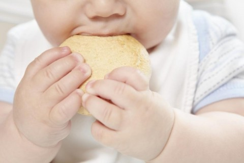 New Research: Why Parents Give Solid Foods Early