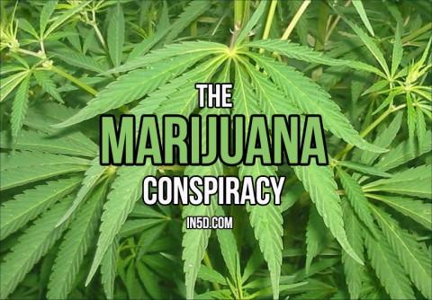 The Marijuana Conspiracy: The Real Reason why Hemp is ILLEGAL