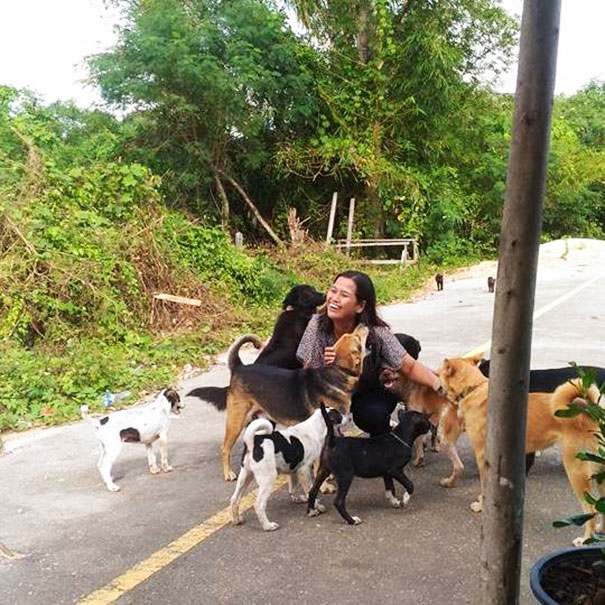 stray-dog-brings-gift-feeding-woman-thailand-2