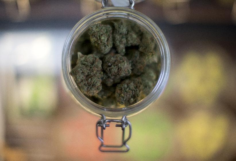 Marijuana legalization movement declares Election Day victory