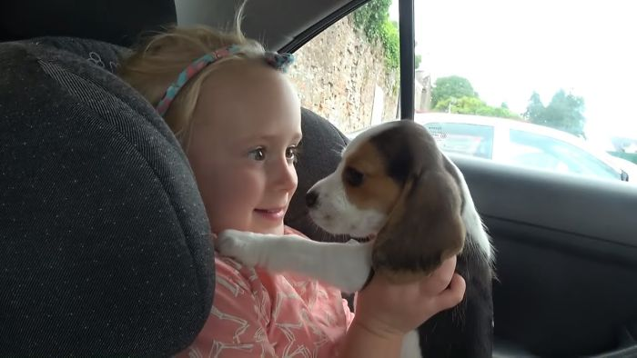 Heartwarming Dog And Baby Reaction To The New Puppy
