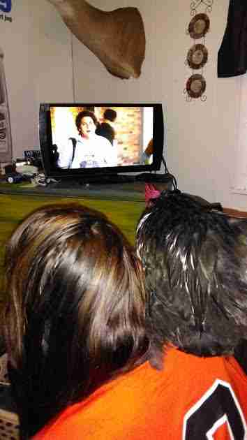 Rooster sitting on girl's shoulder as they watch TV