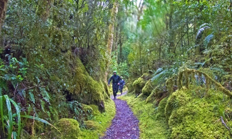 Running New Zealand's Great Walks: hallucinations, frozen extremities and near-drownings