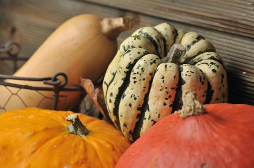 5 Ways Pumpkin Boosts Your Immune System