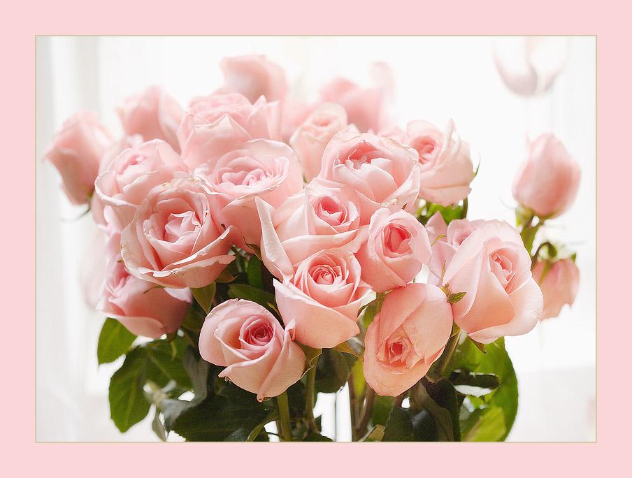 Картинки, красивая открытка с розами с днем рождения ольга