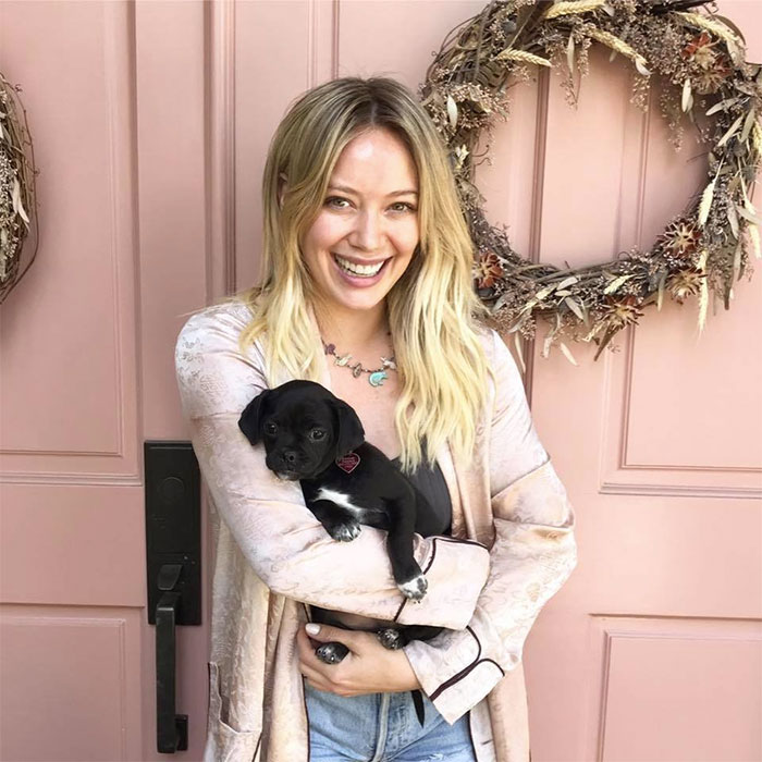 No One Wanted This Puppy Because It Was Different, So Hilary Duff Decided To Adopt It