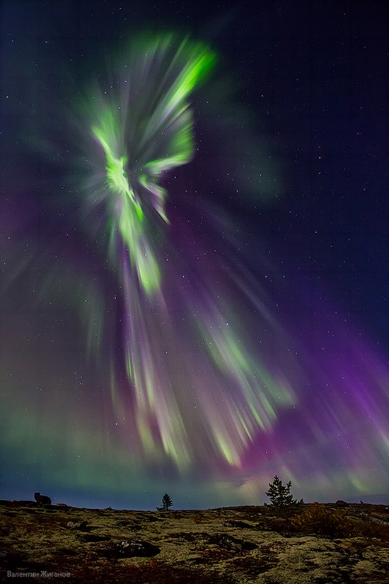 Northern lights in the sky over Murmansk region, Russia, photo 9