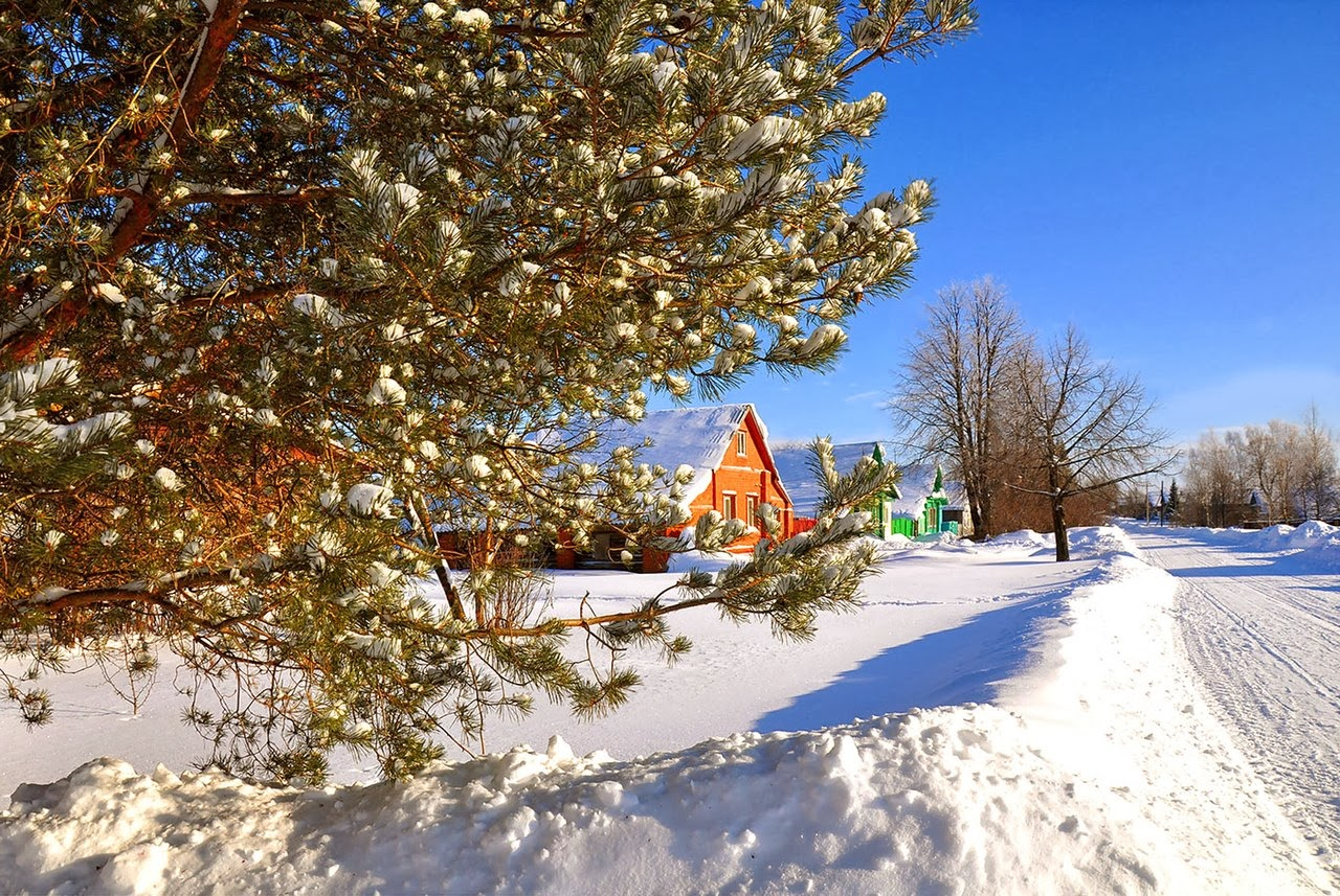 Russian village in winter