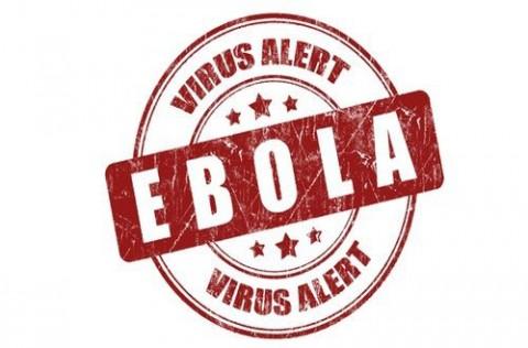Ebola CDC Update: Flesh Eating Bacteria, Creepy Crawlies among us