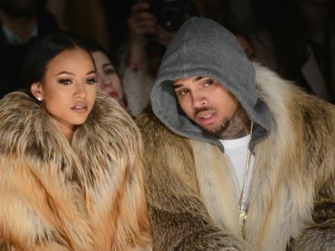 PETA Goes After Chris Brown's 'Ugly Violence'