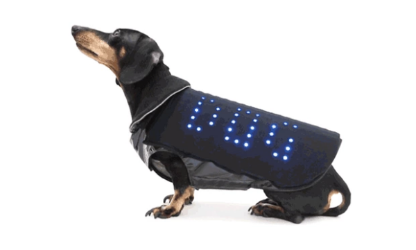 Disco Dog LED vest will make your pet sparkle at night