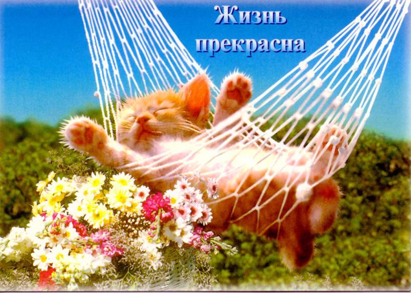 Жизнь продолжается открытка, тему москва
