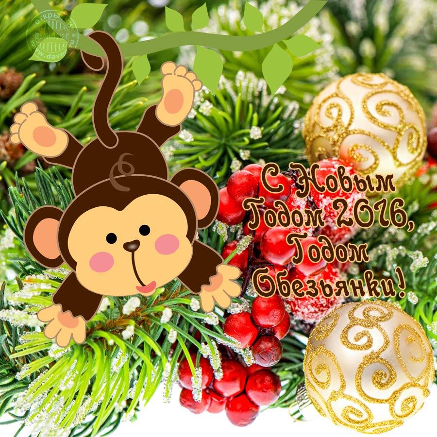 Куртом кобейном, открытки новогодней обезьяны