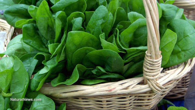 Leafy green vegetables improve heart function and reduce diabetes and obesity risk
