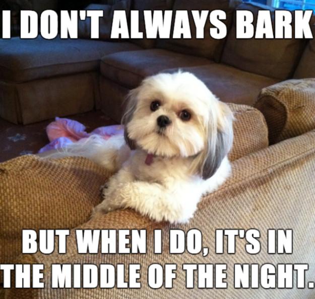 I Don't Always Bark
